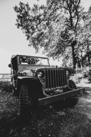 Willys Jeep parked off road under a large tree